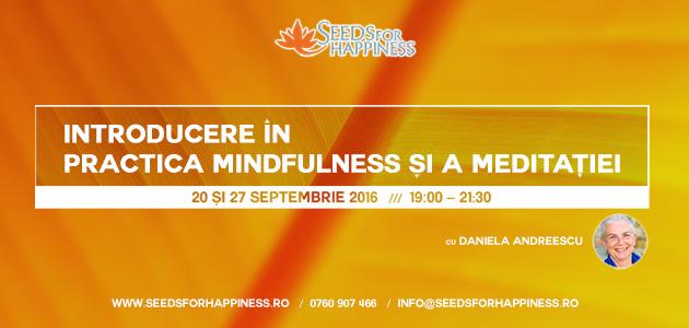 introducere-meditatie-daniela_site_630x300