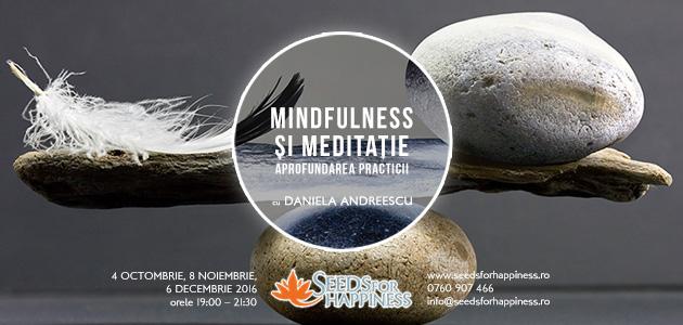 meditatie-avansati-daniela-_-site_-630x300
